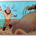 Kuifje verstijft bij het zien van de spin!