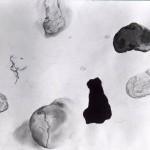 studieblad stenen 01