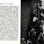 blz.7