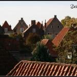 Blik over de daken voorbeeld