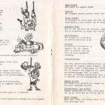 1978 Recordpogingen