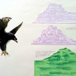 Dans vogels studie