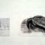 De Maaltijd natuur schetsen