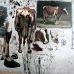 Studies koeien totaal