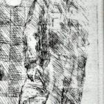 Lijnets vlieg detail
