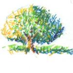 Alternatief met krijtjes: studie licht en schaduw in een boom
