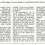 Artikel BN/DeStem