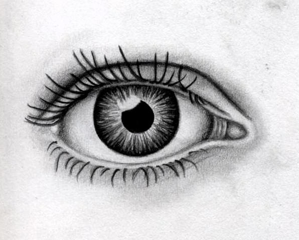 Eye 2007